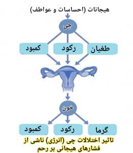 هیجانات و بیماری های زنان